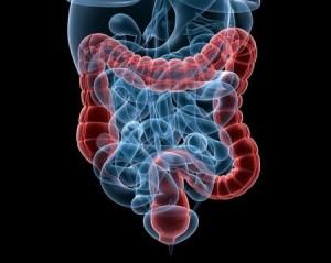La proctologia e le sue patologie