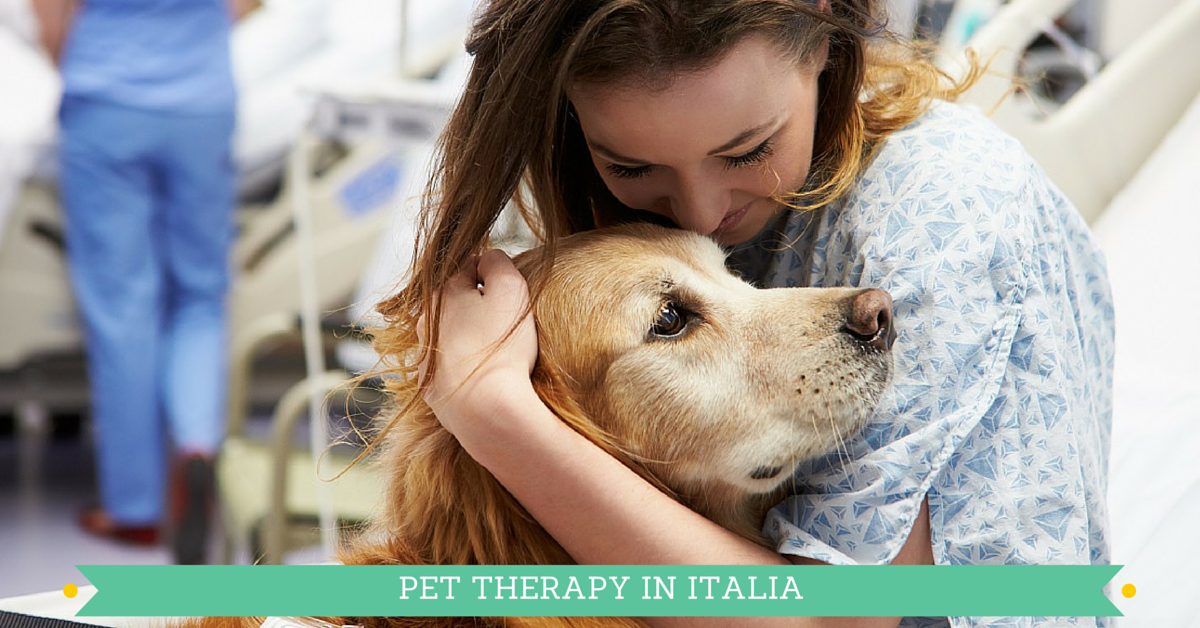 Pet Therapy, i benefici degli animali