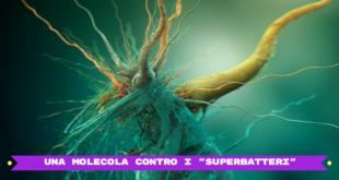una-molecola-contro-i-superbatteri