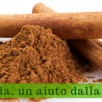 Cannella, un aiuto dalla natura - Villa Mafalda Blog