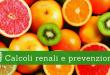 Calcoli renali e prevenzione 2 - Casa di Cura Privata Villa Mafalda di Roma