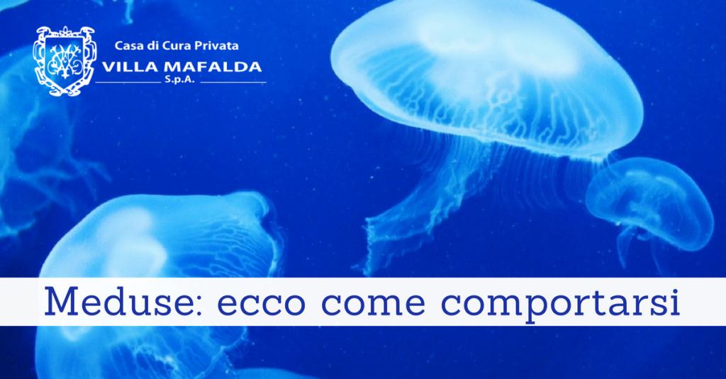 Meduse - ecco come comportarsi - Casa di Cura Villa Mafalda di Roma