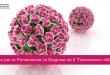 Centro per la prevenzione dell'HPV - Casa di Cura Villa Mafalda di Roma - Villa Mafalda Blog